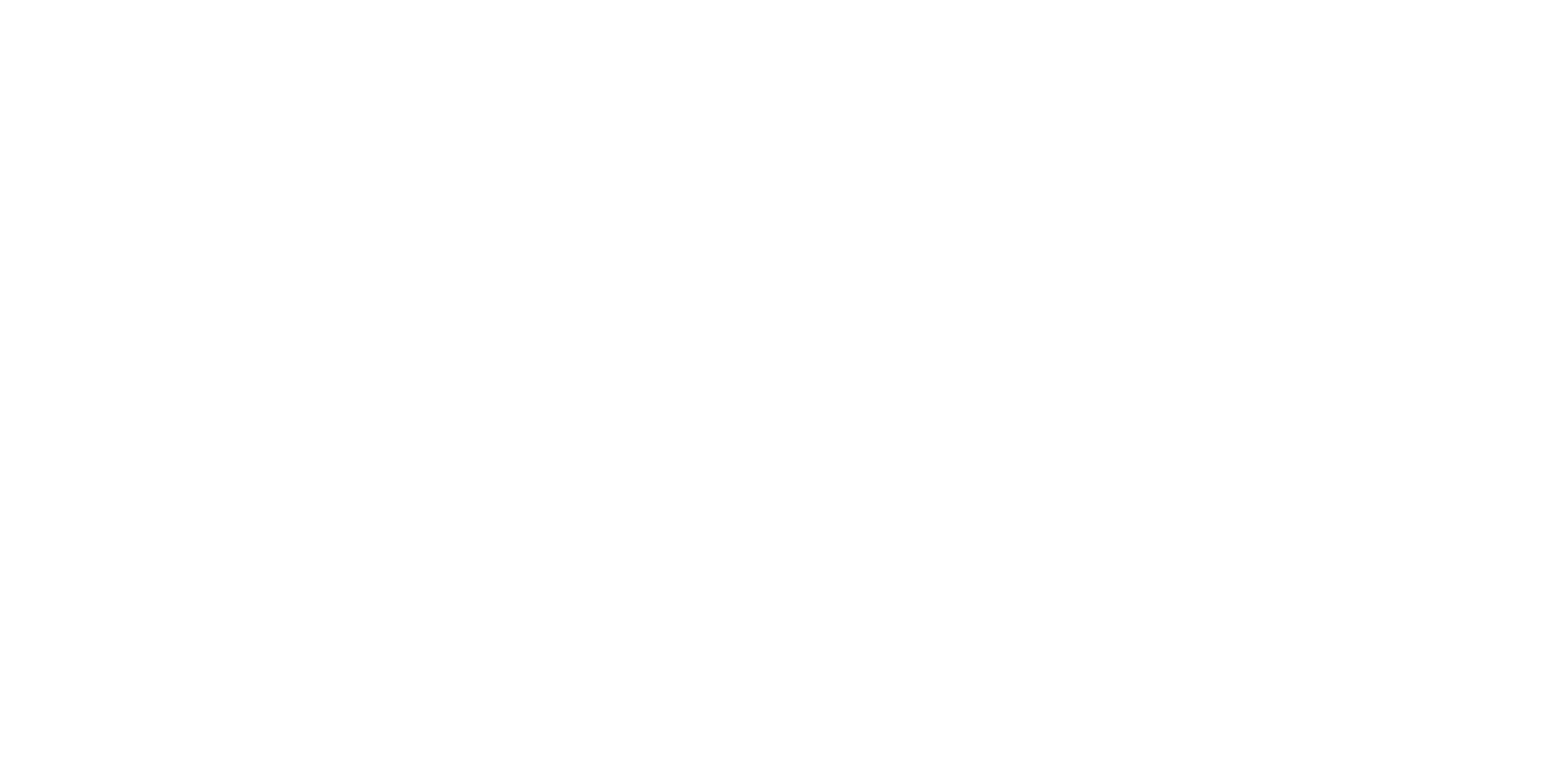 Logo Fly High Production (napis)